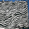 Black and White Zebra Valance