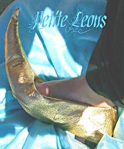 Princess Jasmine Genie Shoes