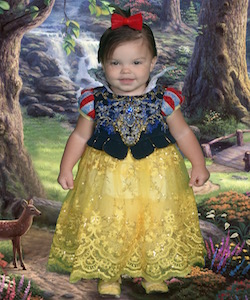 Renaissance Snow White Costume $50.00 Rental