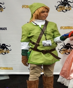 Legends of Zelda Link Costume